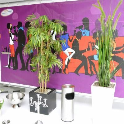 Sfeerdecoratie huren huren in Barendrecht en Rotterdam